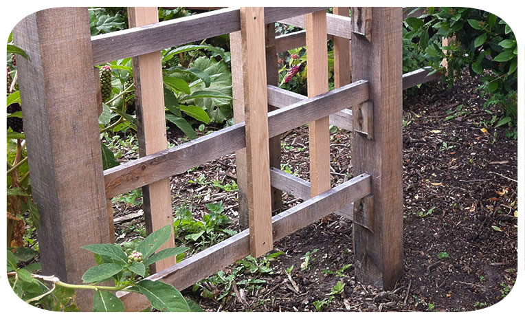 oak trellis— click picture to return to gallery